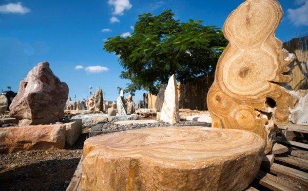 מצבה מעץ מאובן