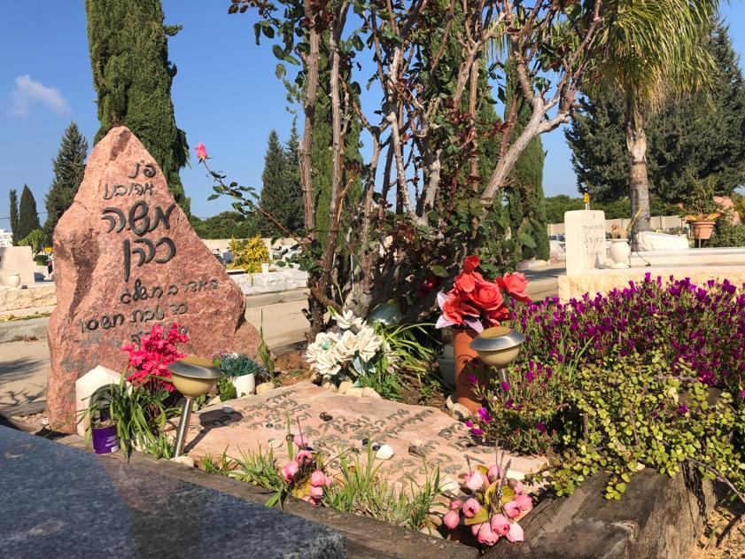 מצבה מאבן חן מצבות חברון חלילה שיש שחור לבן בזלת צמחיה צמחים פרחים